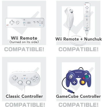 Super Smash Bros Controller Support